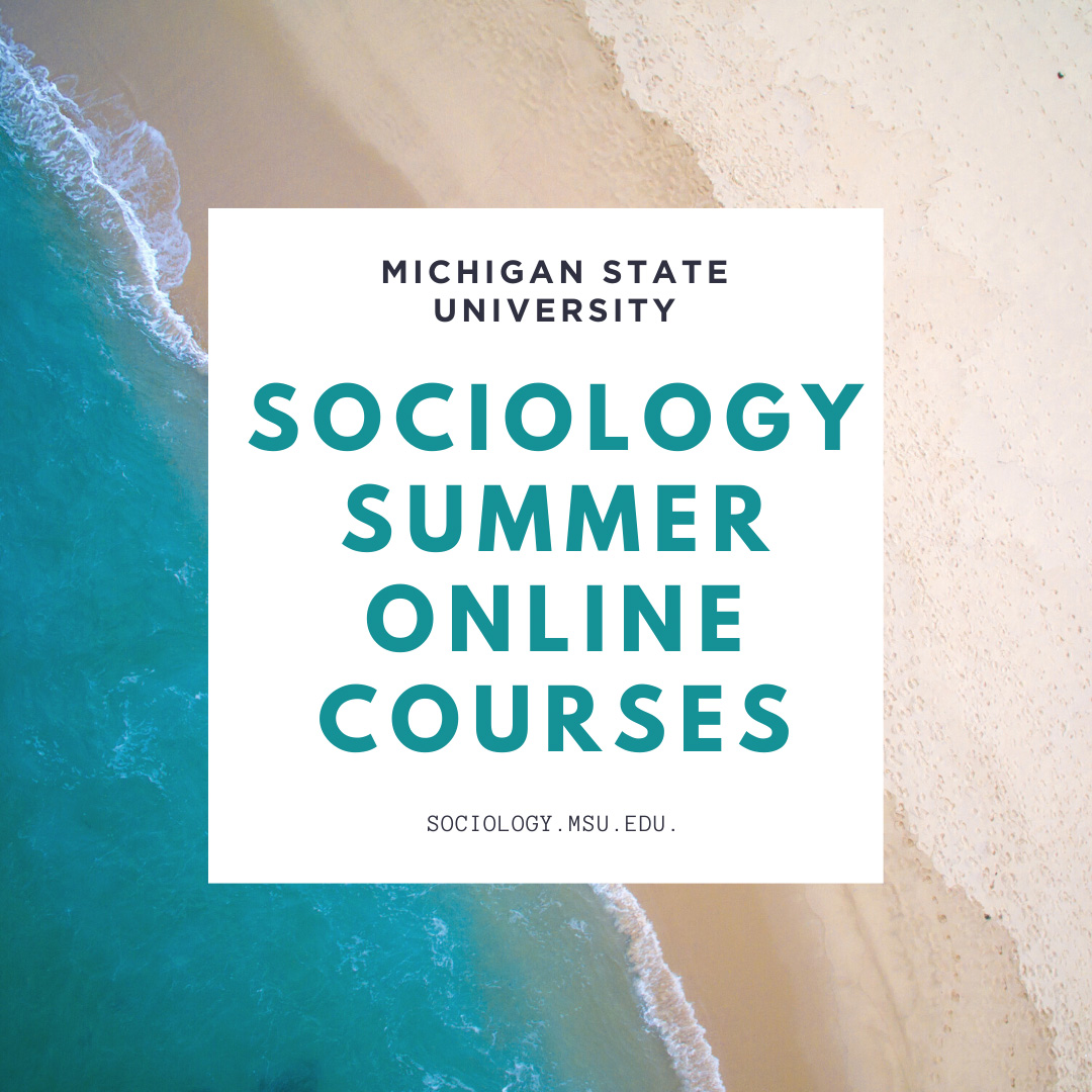 Sociology Offering Summer Online Courses